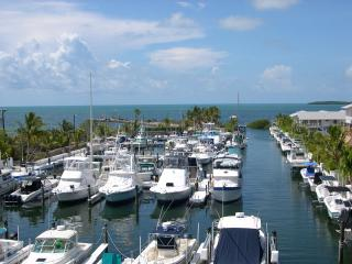 2/2 Oceanfront Suite - Kawama Yacht Club/Pri. WiFi - Key Largo vacation rentals