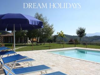 Private villa,11 sleeps, pool, pet-friendly, wi-fi - Mondaino vacation rentals