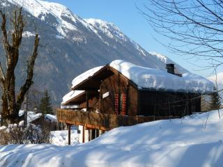 Chamonix Traditional wooden chalet with wonderful - Haute-Savoie vacation rentals