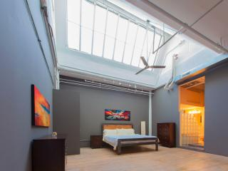 Penthouse Loft in Heart of Downtown - Saint Ann vacation rentals