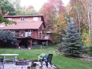 Catskill Mountain Getaway - Where Memories R Made - West Kill vacation rentals