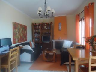 Cosy apartment - Sao Martinho do Porto vacation rentals