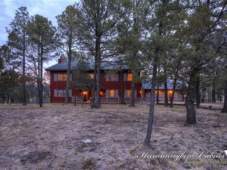 Big Sky Lodge / Bunkhouse 694 - Ruidoso vacation rentals