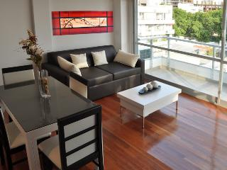 LUXURY 1 BEDROOM / 1.5 BATH (LC5) ROOFTOP JACUZZI! - Buenos Aires vacation rentals