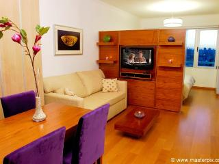 LUXURY STUDIO W/ AMENITIES (LP2) - Buenos Aires vacation rentals