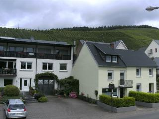 Vacation Apartment in Lieser (Mosel) - spacious, modern, fully equipped (# 5220) - Lieser vacation rentals