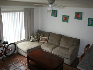 714.5 Ostend Court - San Diego vacation rentals