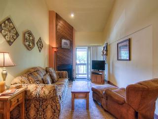 CONDOMINIO DE ESQUI - Angel Fire vacation rentals