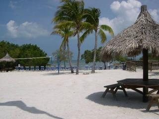 2/2 W/Ocean Views - Ocean Pointe Suites - D Model - Key Largo vacation rentals