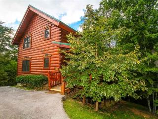 Bear Paws - Pigeon Forge vacation rentals