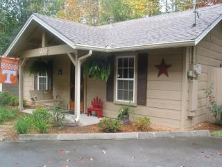 cute cozy cabin - Gatlinburg vacation rentals