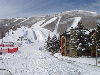 Snowflower Park City 2BR/2BA Ski-In, Ski-Out Condo - Park City vacation rentals