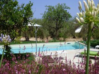 Villa il Mandorlo - Noto vacation rentals