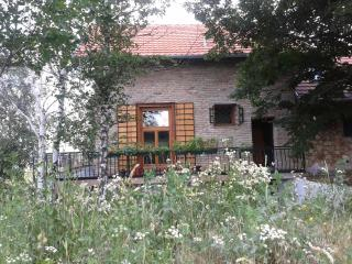 Enjoy the comfortable and worm home in a mountain area - Sremski Karlovci vacation rentals
