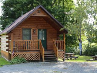 Water Front Private cabin with Island 275 Feet, - Hancock vacation rentals