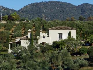 Andalusian holiday villa near Ronda, Spain - Ronda vacation rentals
