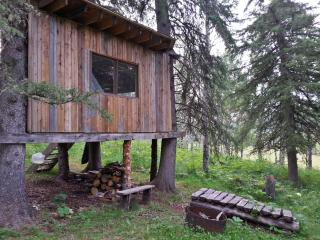 Treehouse in the western woods - Turner Valley vacation rentals