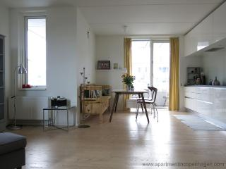 Klaksvigsgade - Close To Water And Free Parking - 625 - Copenhagen vacation rentals