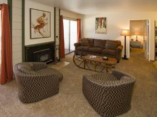 Mountain Shadows #C02 - Mammoth Lakes vacation rentals