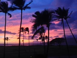 Stunning View, Oceanfront **ASK ABOUT SPECIALS** - Kihei vacation rentals