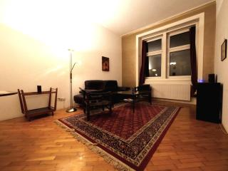 Cozy 1Br Flat in City Center 70m2 +Wifi - Vienna vacation rentals