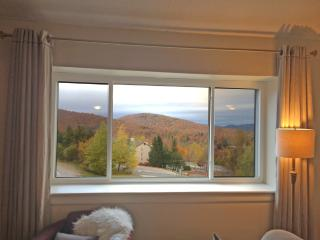 Beautifully Updated Condo Close to Snowshed Lift - Quechee vacation rentals