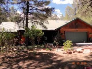 ANTELOPE - Pagosa Springs vacation rentals