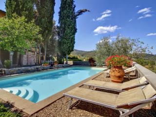 Villa Grevigiana - Figline Valdarno vacation rentals