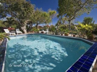 Fabulous 5 Bedroom Villa in Cabrita Point - Cabrita Point vacation rentals