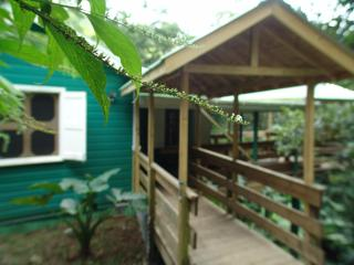 Birdwatchers Rainforest Cottage - Morne Trois Pitons National Park vacation rentals