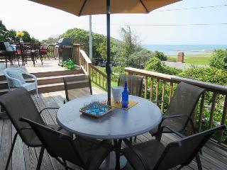 10 Sea Mist Lane Chatham Cape Cod - South Chatham vacation rentals