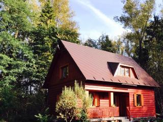 Fisherman's Cabin in Orava  or RYBAROVA CHATA - Namestovo vacation rentals