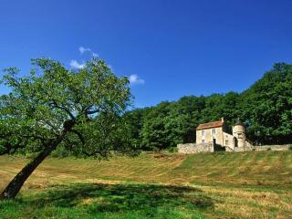 Charming, woodland cottage with stunning view - Saint-Gengoux-le-National vacation rentals