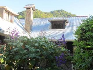 Paul's Cottage: Enjoy Terrace & Garden - Volcan vacation rentals