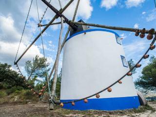 Charming Windmill - Alenquer vacation rentals