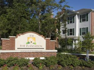 The Woodlands, TX Furnished Apartment - Montgomery vacation rentals