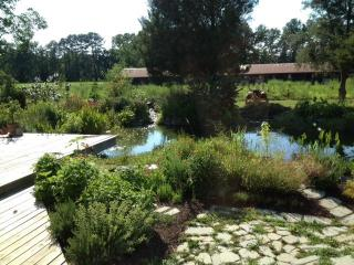 Eastern Shore getaway - Hebron vacation rentals