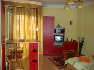 Quiet studio near Cismigiu Gardens - Romania vacation rentals