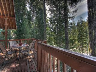 Home w/private hot tub; mountain views; chef's kitchen - Government Camp vacation rentals