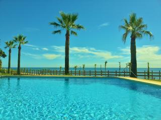 BEACHFRONT DUPLEX PENTHOUSE - Marbella vacation rentals