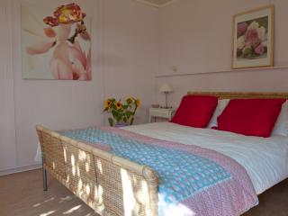 The Pinkhouse - Diever vacation rentals