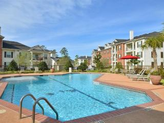 Pool View  2BDR/2Bath Apt/ Home in The Woodlands - Pollok vacation rentals