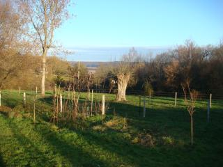 Countryside place in Normandy - Le Neubourg vacation rentals