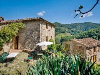 Historic Bottino peaceful countryside villa composed of 2 buildings,  ideal for groups & hiking - Lucca vacation rentals