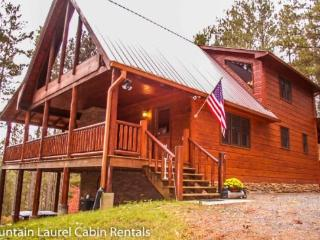 PATRIOTS PARADISE- NEW LISTING, 3BR/3BA CABIN WITH A MOUNTAIN VIEW, WIFI, HOT TUB, SLEEPS 10, AIR HOCKEY TABLE, CORN HOLE BOARDS, FIRE PIT, $175 A NIGHT! - Blue Ridge vacation rentals