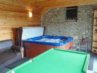 Cottage with Private Use Hot Tub Brynmeillion - Llandysul vacation rentals