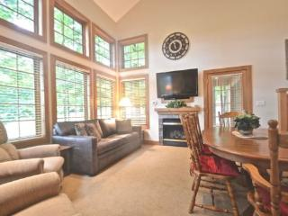 3BR Disciples Village Ski In/Ski Out Condo - Slopeside on Boyneland Run, Recently Remodeled, Sleeps 12 - Northwest Michigan vacation rentals