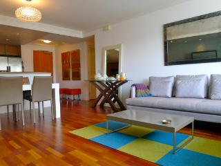 Modern 2BD apt. in South Beach(ZFSBV1307) - San Francisco vacation rentals