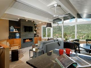 Slope Side on Aspen Mtn; The Nest at Shadow Mtn - Aspen vacation rentals