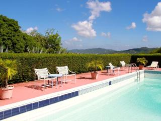 Chateau Belle Terre - Christiansted vacation rentals
